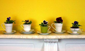 خلاقیت با فنجانهای قدیمی!