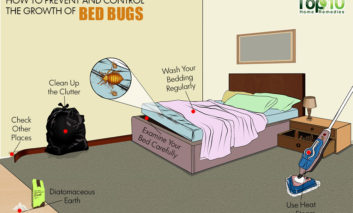 چگونه از هجوم حشرات به رختخواب جلوگیری کنیم؟