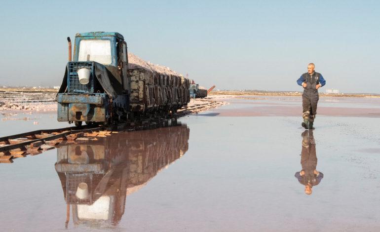 دریاچهای با نمکهای صورتی!