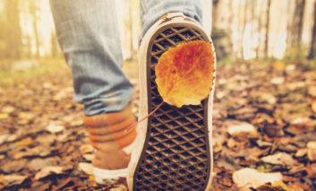 پاییز برگریز؛ بهترین فصل برای سفر را از دست ندهید