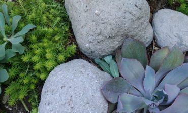سنگ مصنوعی برای دیزاین باغچه!