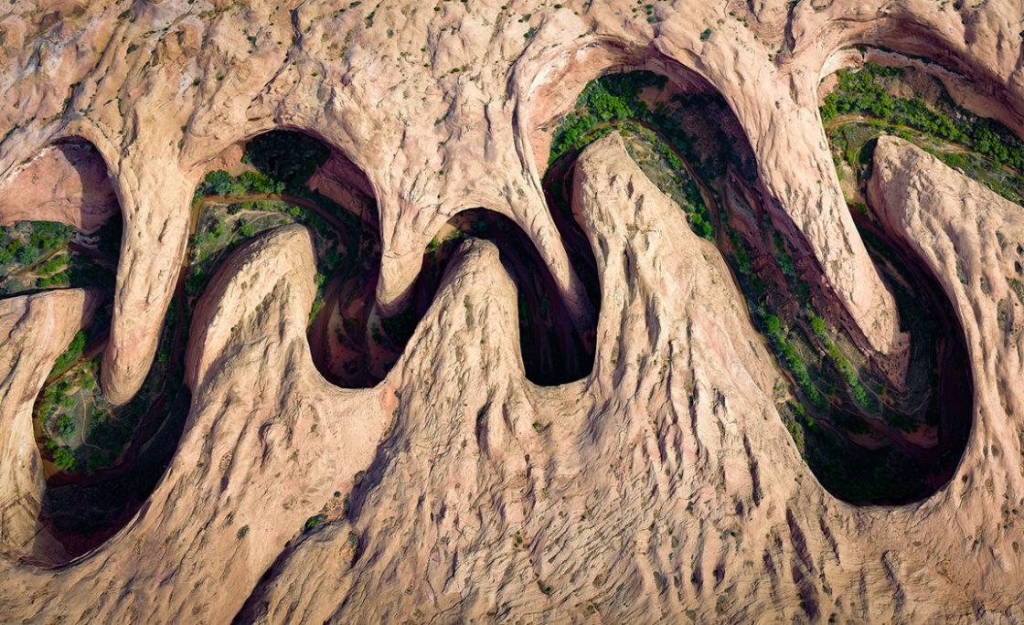 برندگان مسابقات ۲۰۱۷ عکاسی از طبیعت سازمان نشنال جغرافی