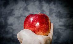 هستههای این میوهها سمی است. نخورید!