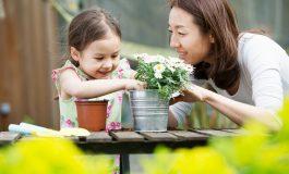 روش صحیح تعویض گلدان گیاهان چیست؟