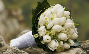 گلهایی و ایدههایی برای عروسیهای زمستانه!