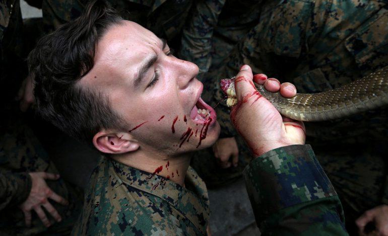 تمرینات نظامی چندشآور سربازان ملیتهای مختلف در تایلند!