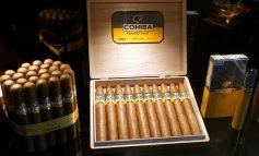 سیگار برگ؛ از مزارع تنباکوی هاوانا تا کارخانه
