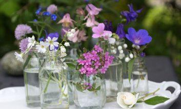 بهترین گلها برای آخر بهار