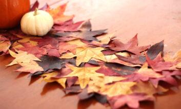ساخت رومیزی با استفاده از برگهای پاییزی
