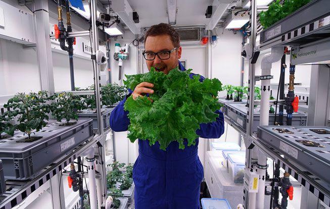 پرورش گیاه در فضا!