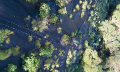 جنگلهای بارانی مخفی شده در قلب آتشفشانی در آفریقا