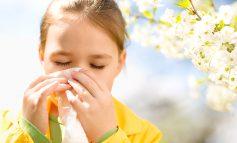 ۱۵ روش خانگی برای درمان آلرژی