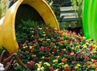 دیزاین گل ریخته برای باغچه و بالکن!
