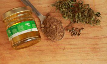 سرطان لوزالمعده و درمان آن با گیاه شاهدانه