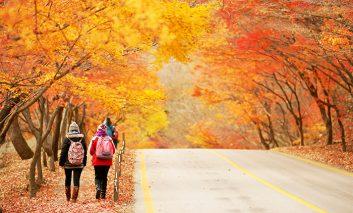 بهترین تورهای پاییزی برای سفری آرام و عاشقانه