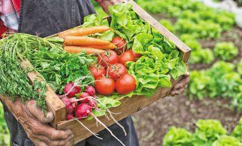 رژیم غذایی کِتو چیست؟