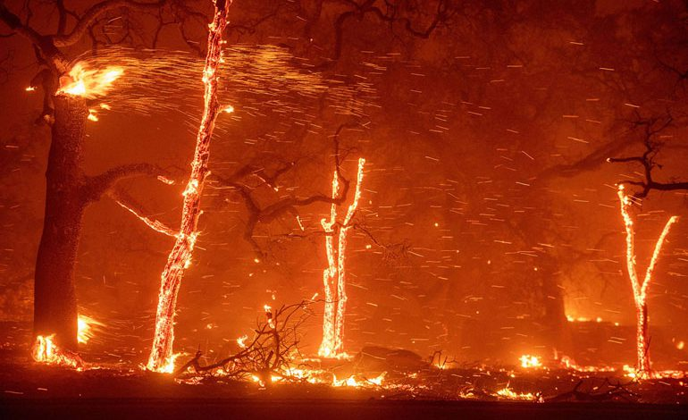 A-Wind-Whipped-Wildfire-Ravages-Paradise,-California-(18)
