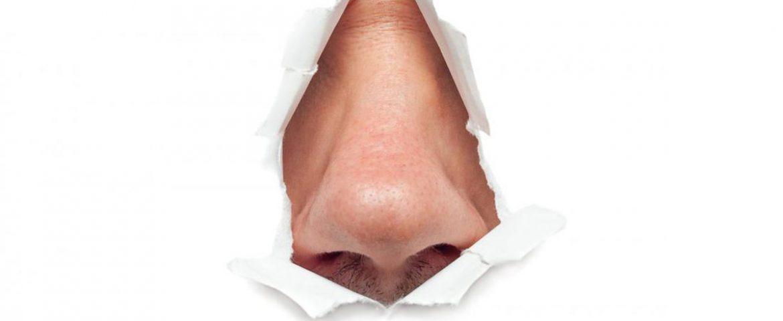 مکانیسم دفاعی آنتی باکتریال کشف شده در بینی