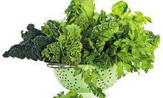 سبزیجات ماه: سبزیجات برگ سبز