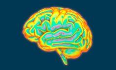 چگونه امواج مغزی، تفکر خلاق را فعال میکنند