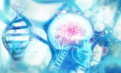 آینده درمان آلزایمر: بهترین رویکرد چیست؟
