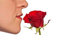 اختلالات بویایی: زمانی که حس بویایی شما گمراه شود