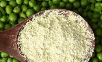 پودر پروتئین نخود: ارزش غذایی، مزایا و عوارض جانبی