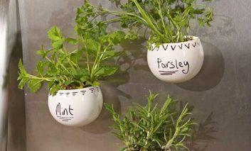 گلدان آهنربایی برای چسباندن به در یخچال درست کنید