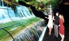 آبشار OLED الجی در نمایشگاه CES 2019 همه را مات و مبهوت کرد!