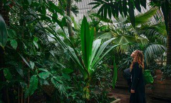 مسابقه بین المللی عکاسی از باغ