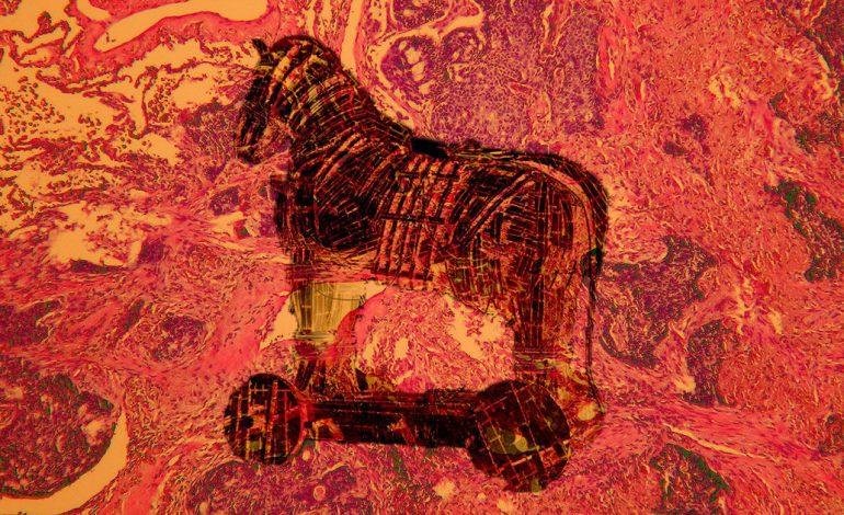داروی ضد سرطان به سبک اسب تروا و نفوذ یواشکی به تومورهای سرطانی