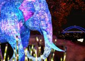 یک باغ وحش با حیواناتی از جنس نور
