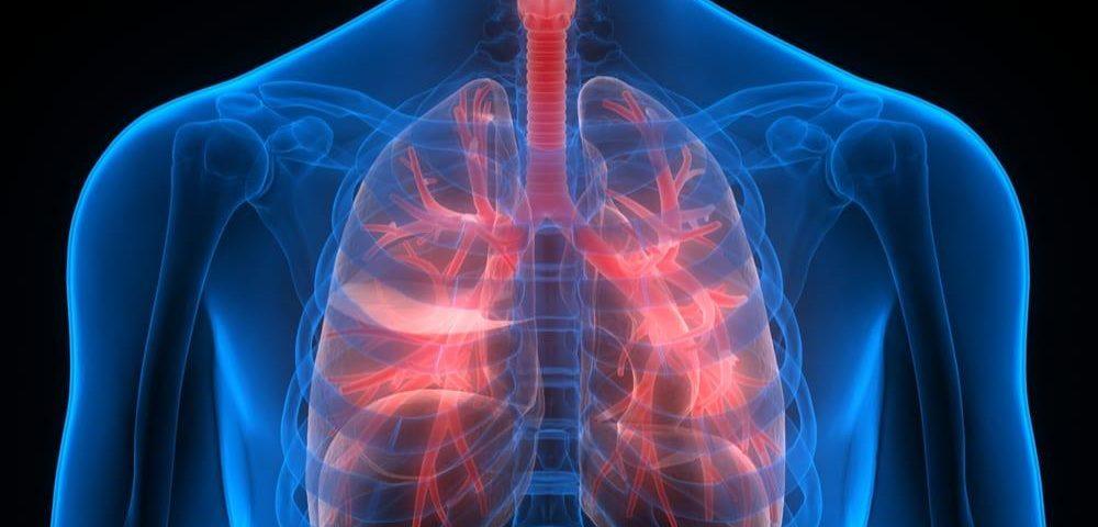 ترمیم ریههای به شدت آسیب دیده با استفاده از یک پلتفرم گردش خون
