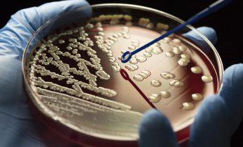 افزایش ظهور اَبَر میکروبها: مقابله با بحران مقاومت آنتی بیوتیکی