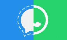 ۵ سوال رایج در مورد سیگنال؛ جایگزین پیامرسان واتساپ چه ویژگیهایی دارد؟