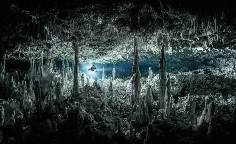 Gothic Chamber: نایب قهرمان ، زاویه باز.