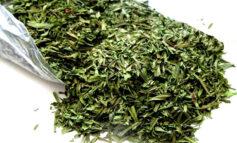فواید خرید سبزی خشک