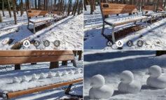 مقایسه دوربین گلکسی S21 Ultra با دوربین DSLR در عکاسی از منظره
