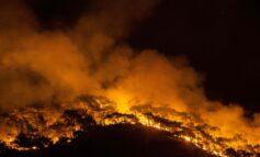 جنگ ترکیه با آتش سوزی