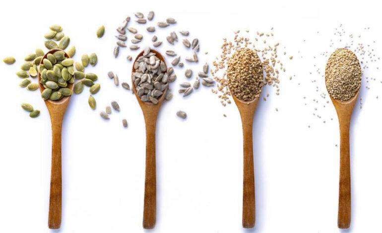 دانههای خوراکی، منبع سرشاری که نباید از آن غافل باشیم